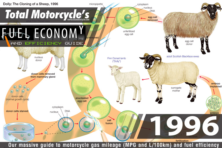 1996 Motorcycle MPG Fuel Economy Guide