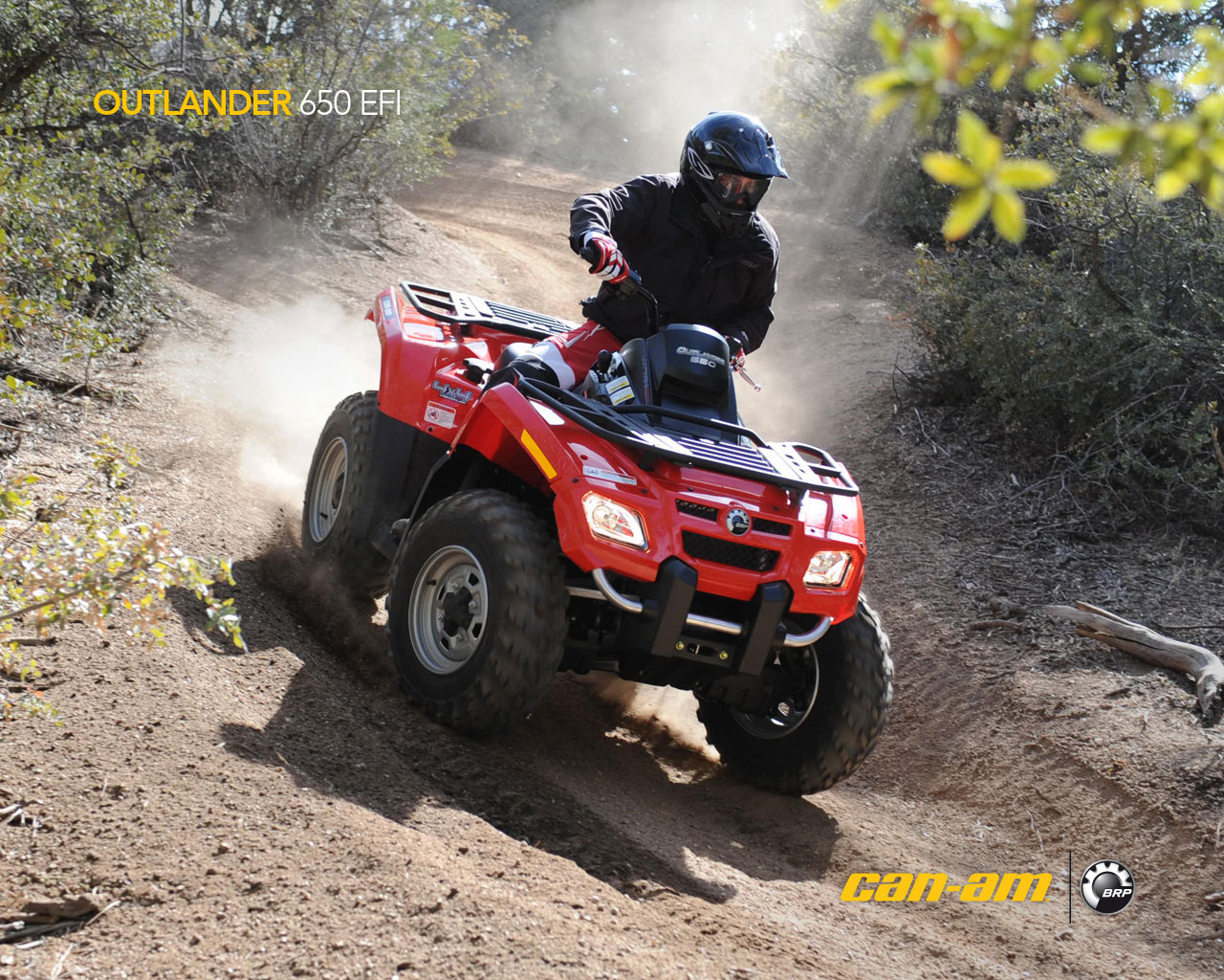 2009 can am outlander 650 efi. Black Bedroom Furniture Sets. Home Design Ideas