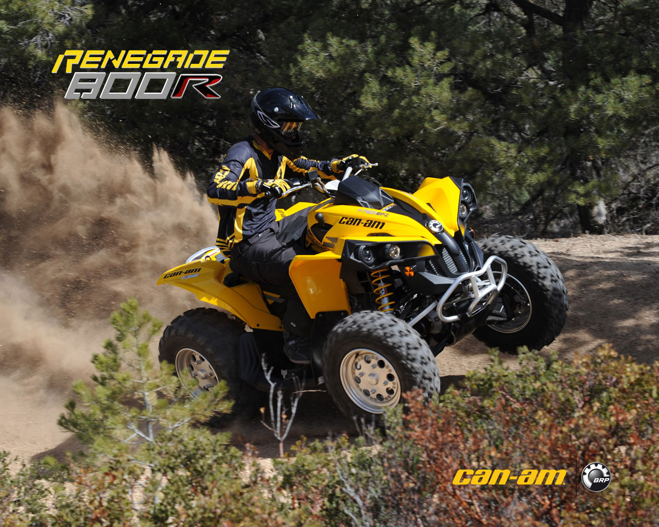 2009 can am renegade 800r efi. Black Bedroom Furniture Sets. Home Design Ideas