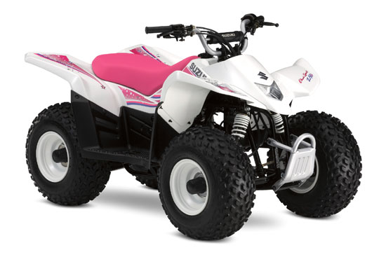 2009 Suzuki QuadSport Z50 Special Edition