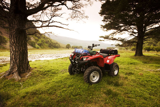 2009 Yamaha Grizzly 550 FI IRS