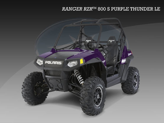 2010 Polaris RZR S Purple Thunder