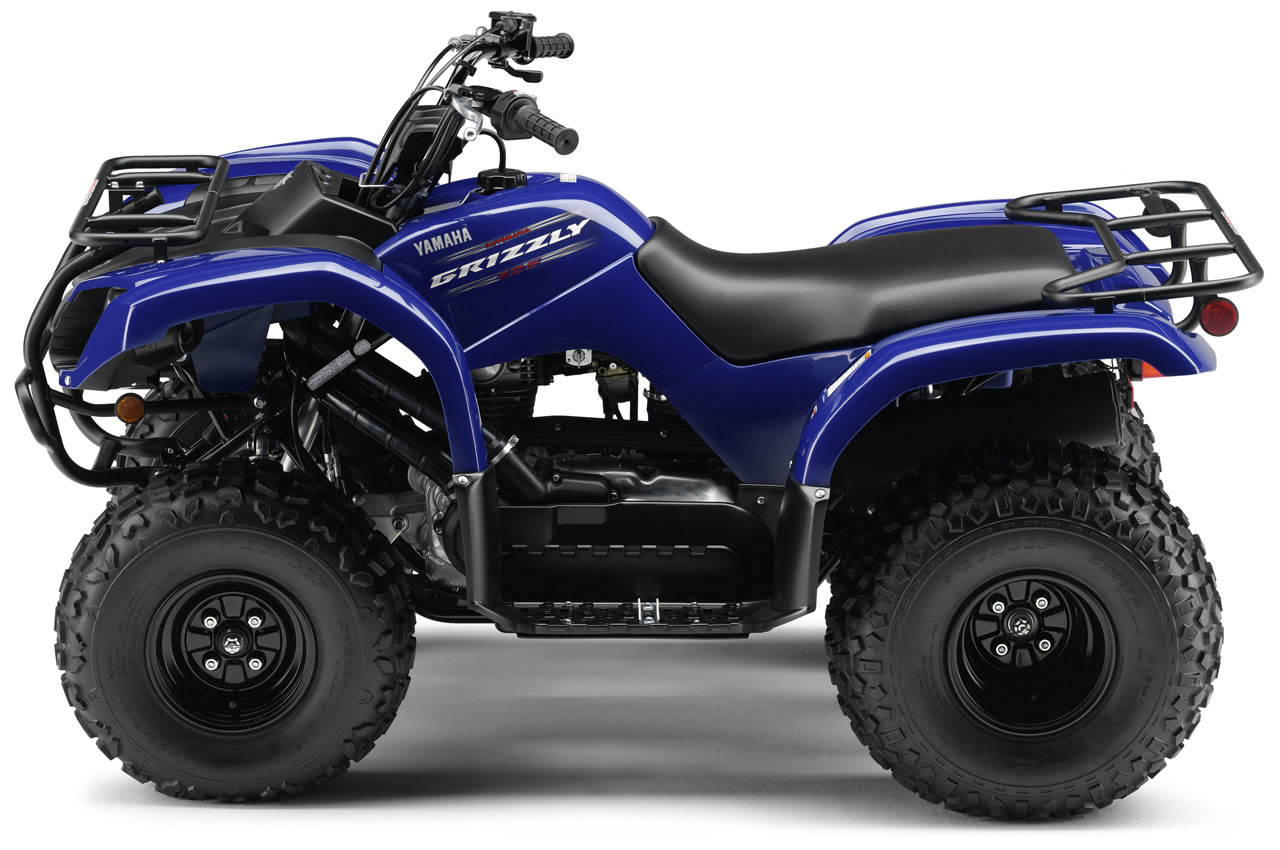 2010 yamaha grizzly 125 rh totalmotorcycle com Yamaha Grizzly 125 Automatic Suzuki 125 ATV