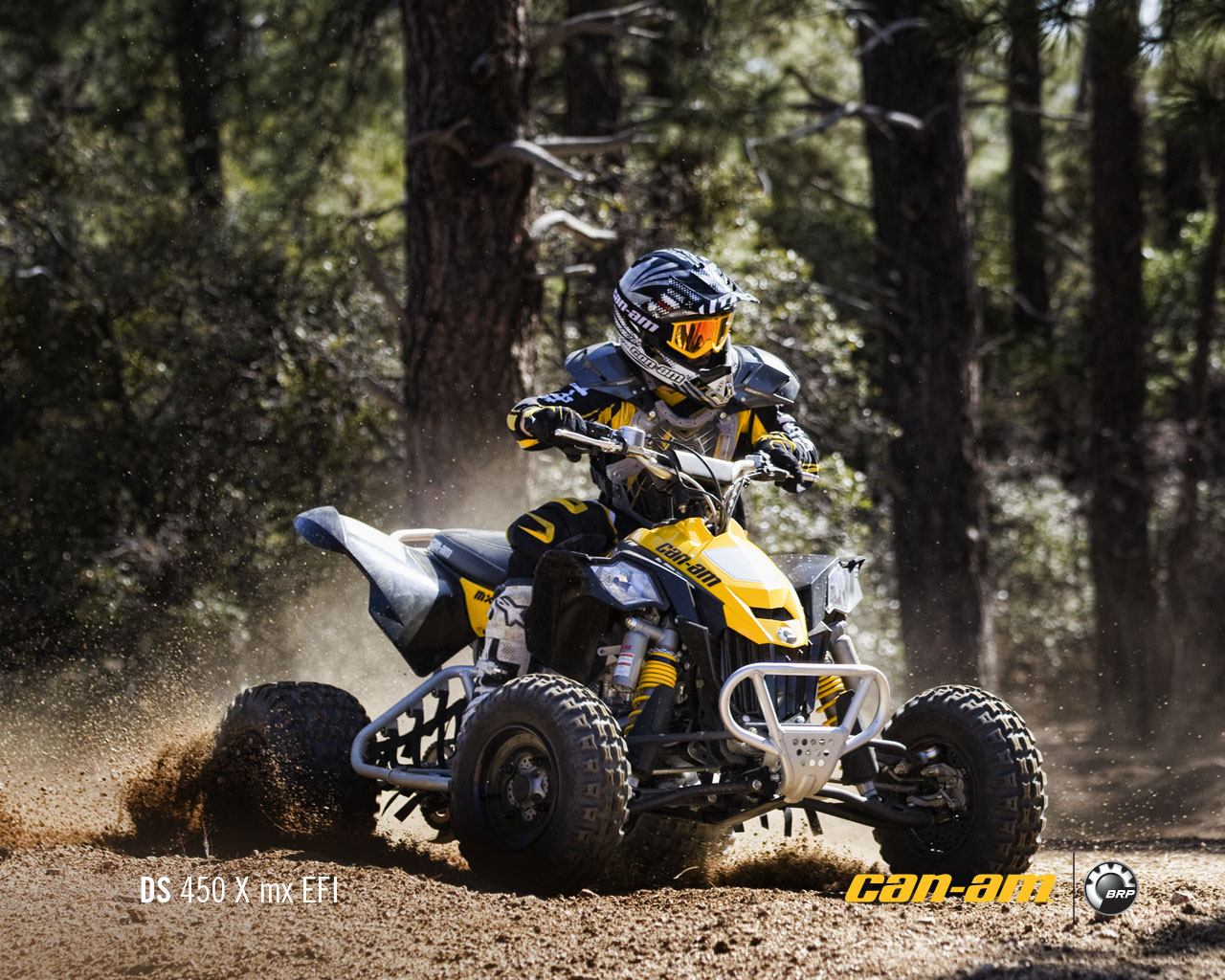 Can Am Ds 450 >> 2011 Can Am Ds 450 X Mx