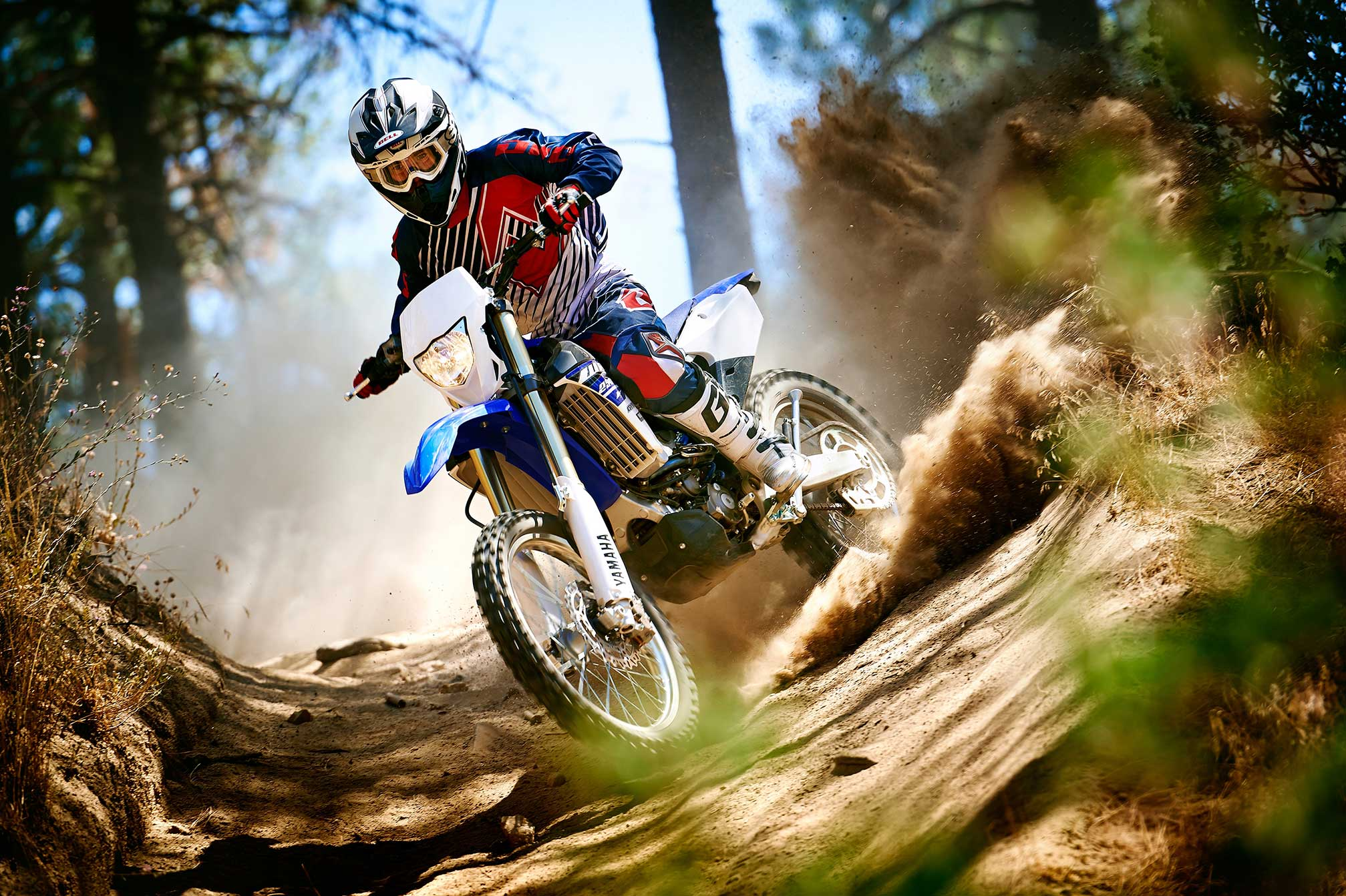 2015 Yamaha WR250F Review