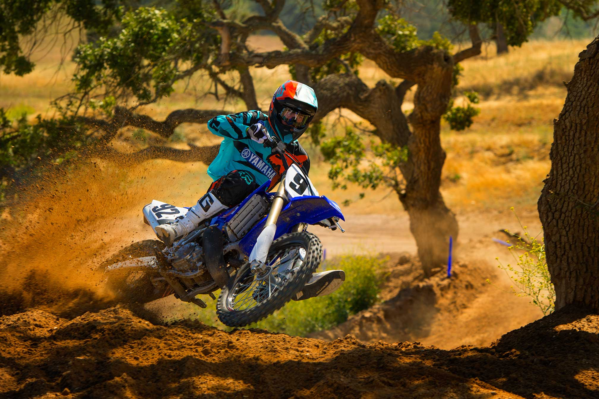 2017 Yamaha YZ250 Review