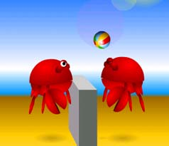 Crab Volleyball