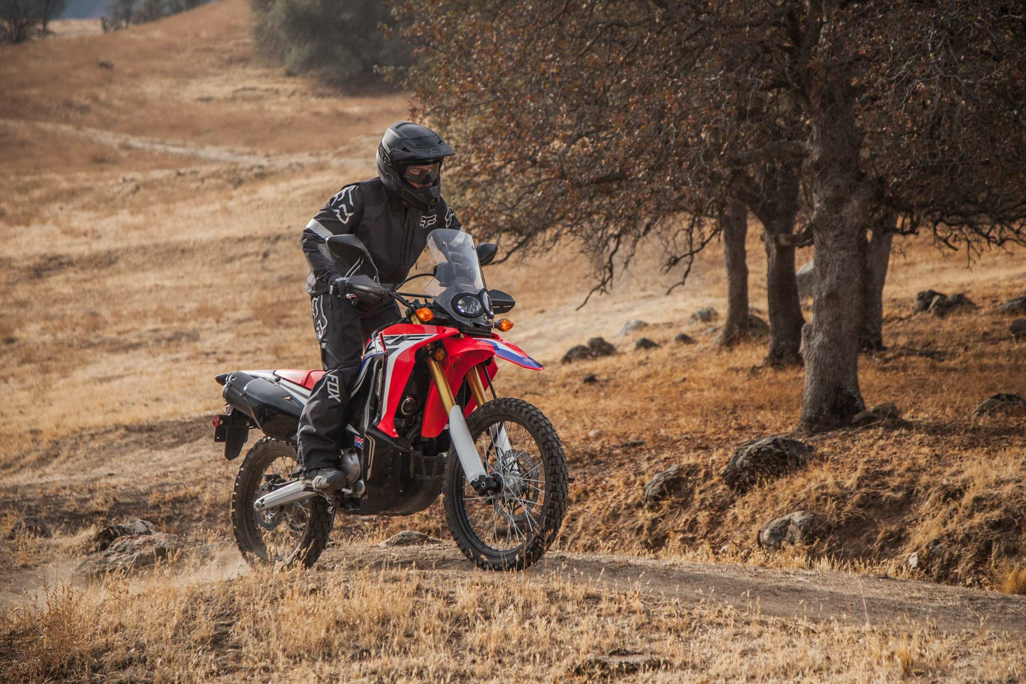 2019 Honda Crf250l Rally Guide Total Motorcycle