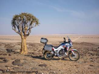 2020 Africa Twin Adventure Sports ES DCT